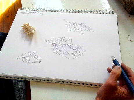 Drawing with my eyes shut - a broken shell was placed in my left hand,  and drawn with my right without looking...