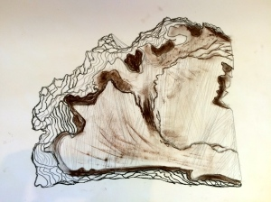 A mixed media observational drawing of a log of wood that I made before the collaborative exercise...
