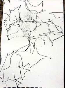 Line drawing of shadows from the cherry tree moving in the wind...